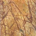 rainforest-brown-marble