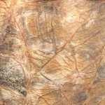 rainforest-brown-marble-100