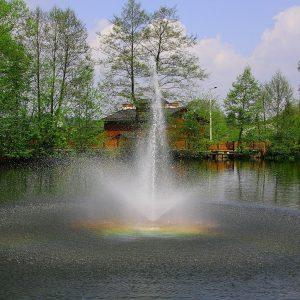 decorative lake fountain